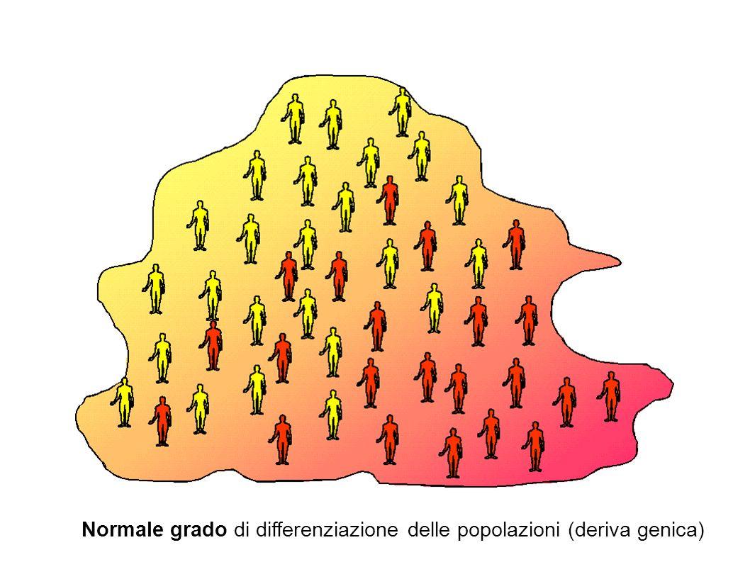 Normale grado di differenziazione delle popolazioni (deriva genica)