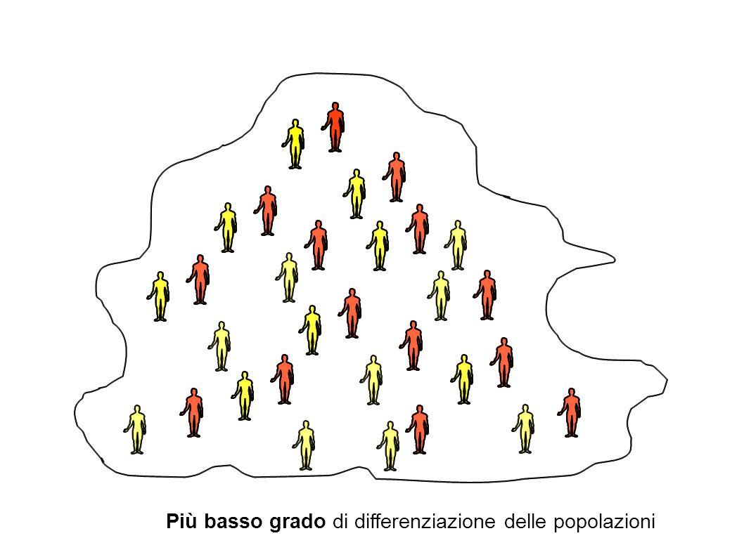 Più basso grado di differenziazione delle popolazioni