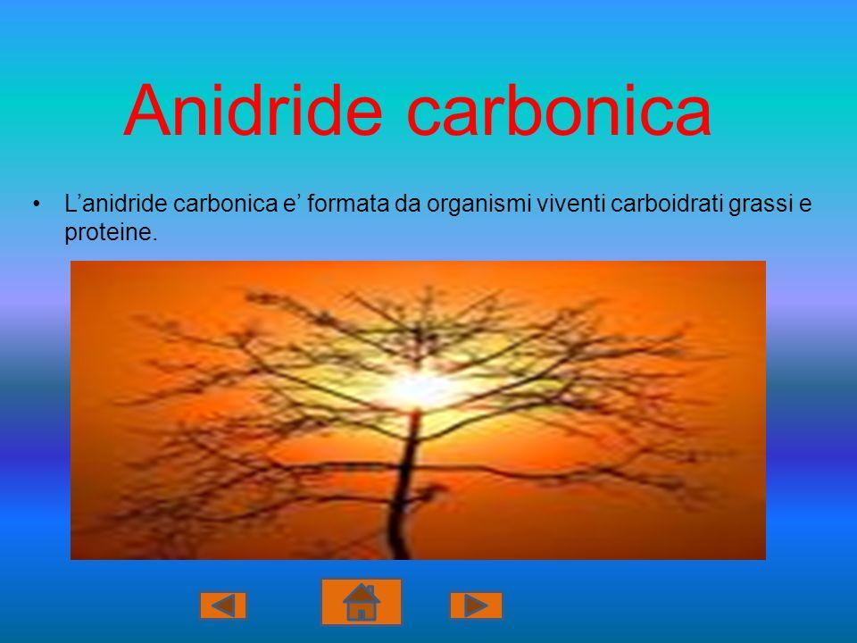 Anidride carbonica L'anidride carbonica e' formata da organismi viventi carboidrati grassi e proteine.