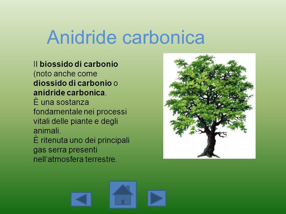 Anidride carbonica Il biossido di carbonio (noto anche come diossido di carbonio o anidride carbonica.