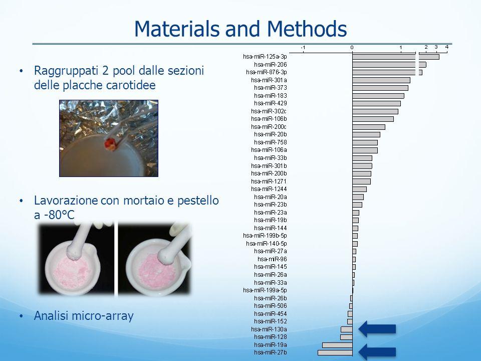 Materials and Methods Raggruppati 2 pool dalle sezioni delle placche carotidee. Lavorazione con mortaio e pestello a -80°C.