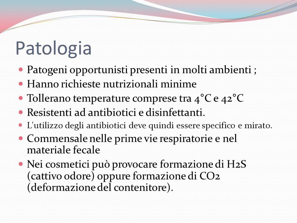 Patologia Patogeni opportunisti presenti in molti ambienti ;