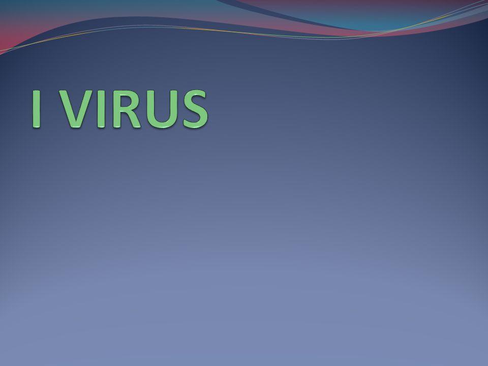I VIRUS