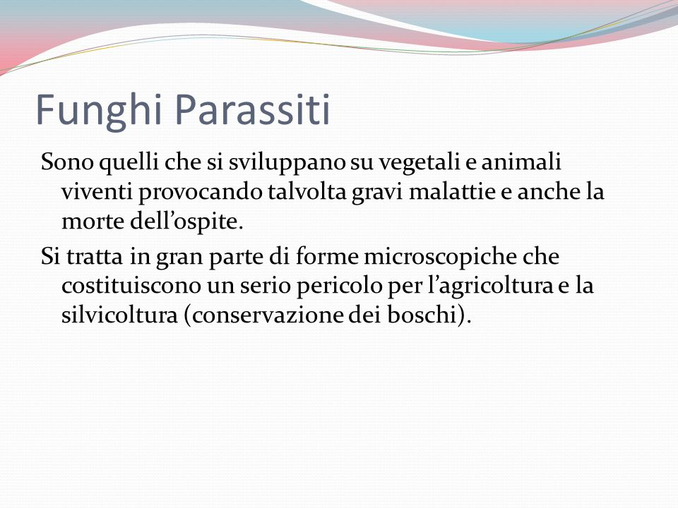 Funghi Parassiti