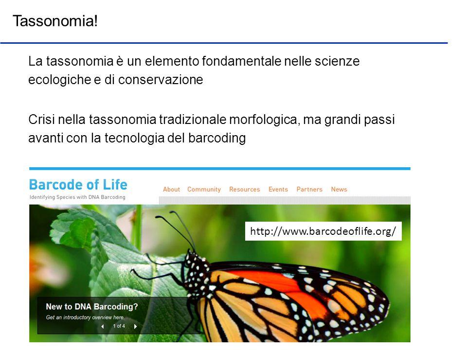 Tassonomia! La tassonomia è un elemento fondamentale nelle scienze