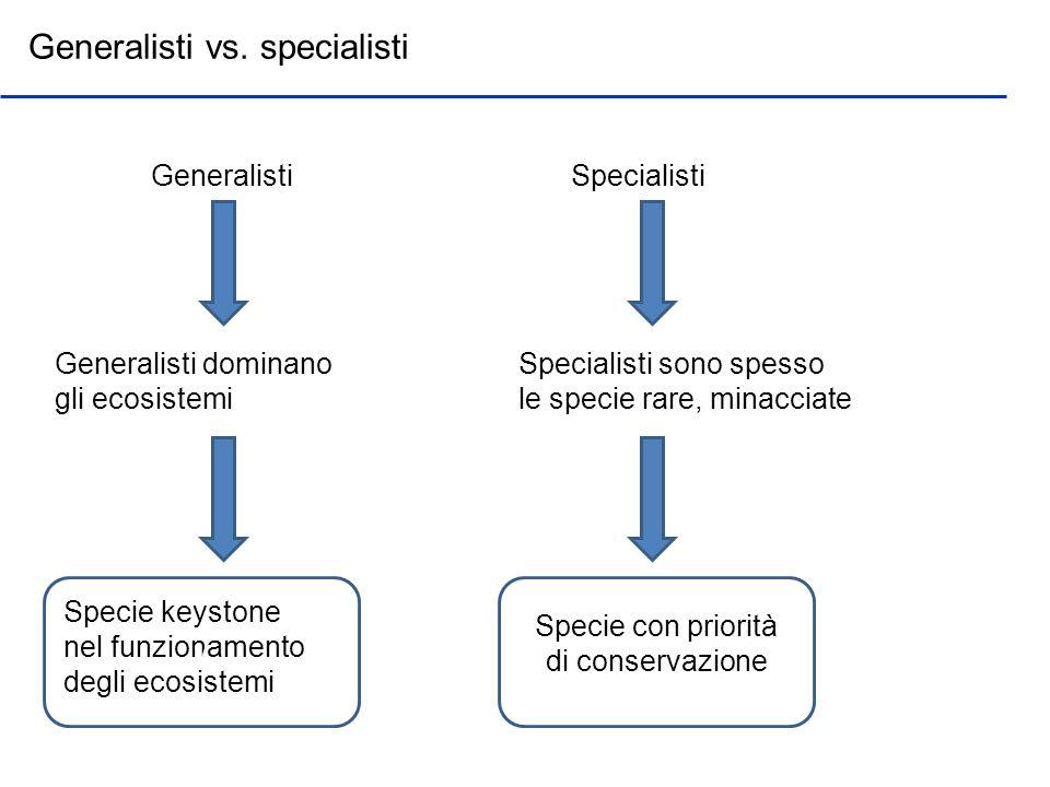 Generalisti vs. specialisti