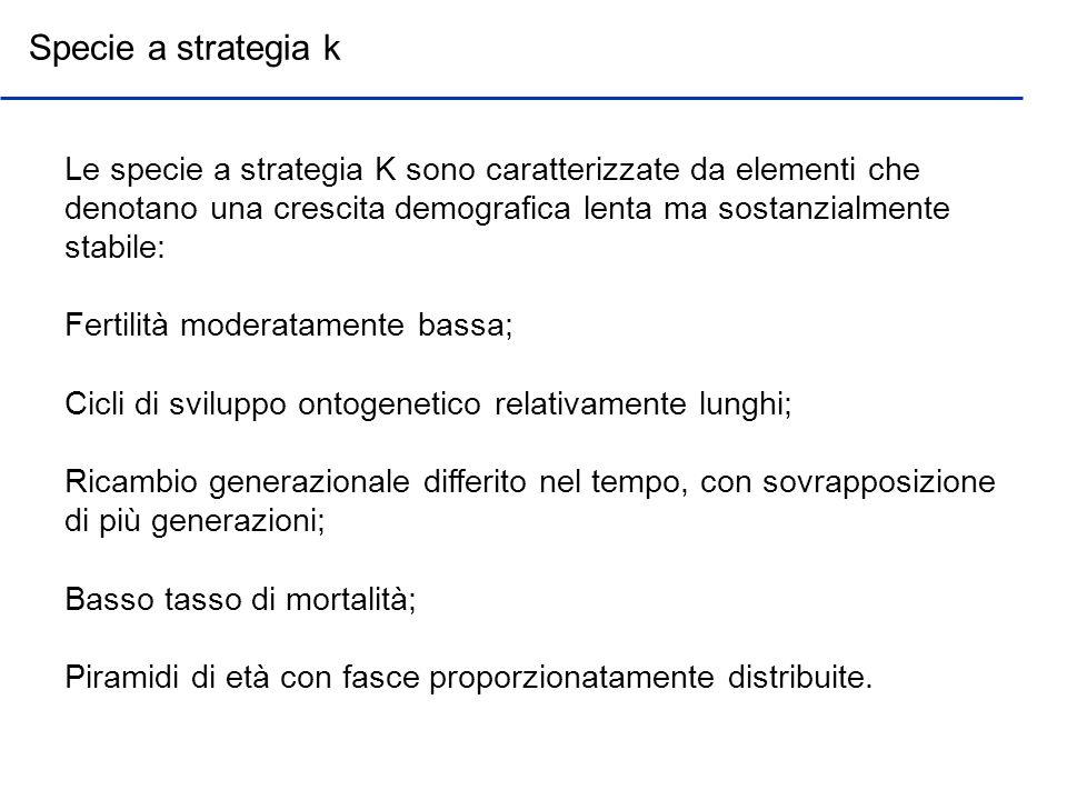 Specie a strategia k Le specie a strategia K sono caratterizzate da elementi che denotano una crescita demografica lenta ma sostanzialmente stabile: