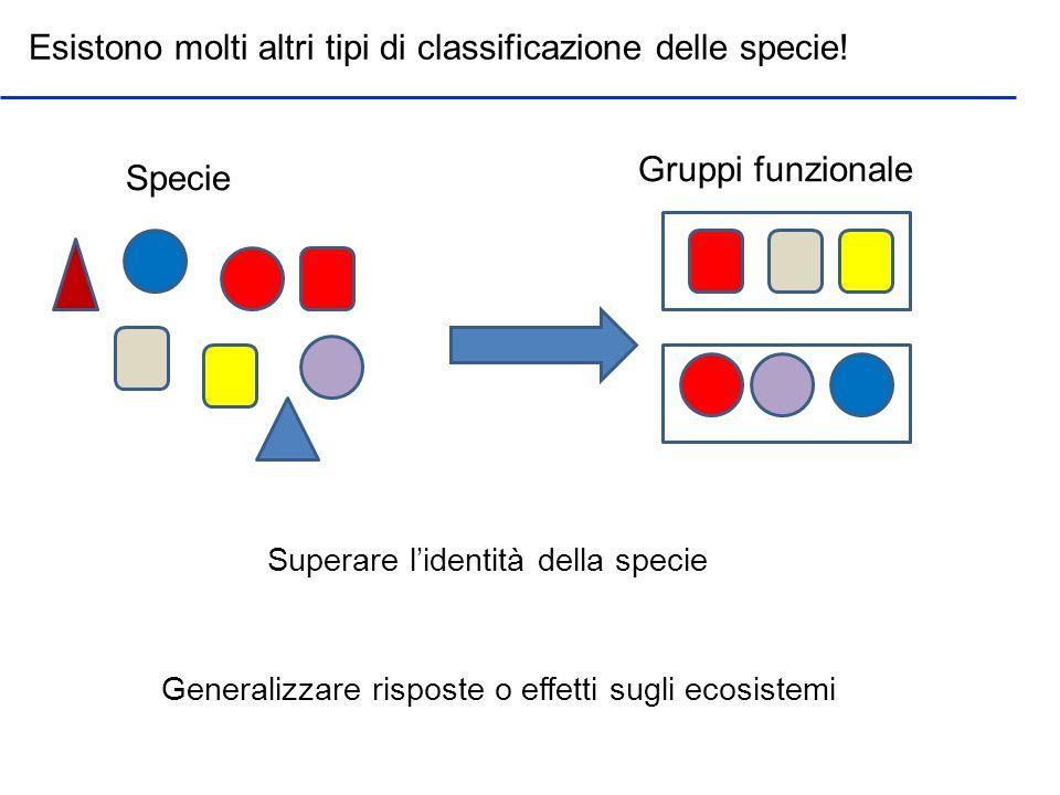 Esistono molti altri tipi di classificazione delle specie!