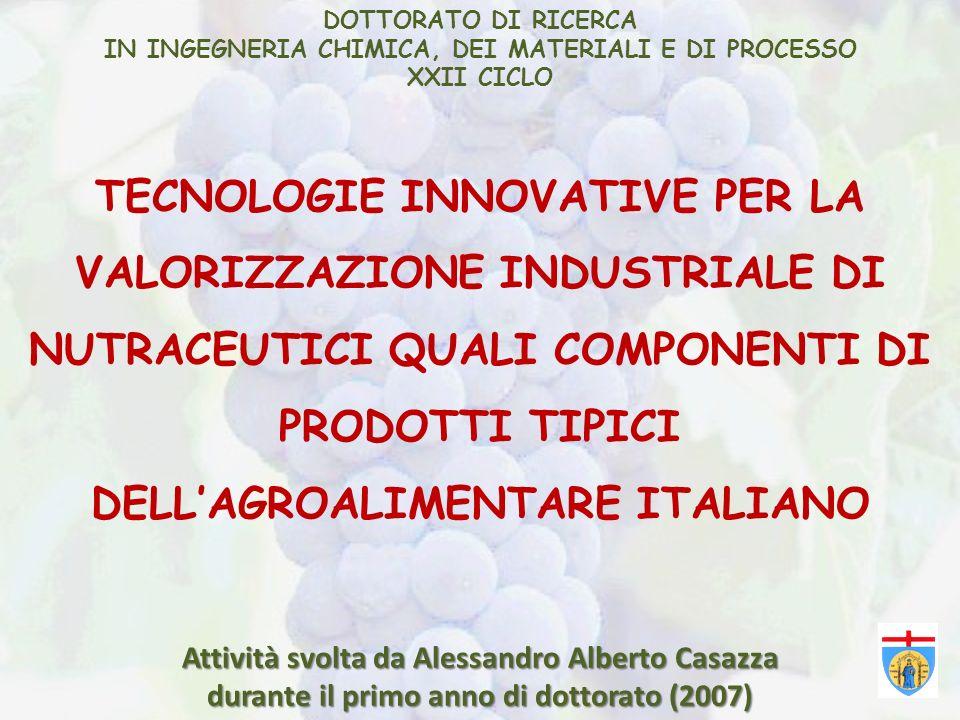 DOTTORATO DI RICERCAIN INGEGNERIA CHIMICA, DEI MATERIALI E DI PROCESSO. XXII CICLO.