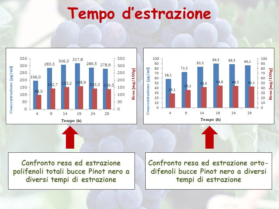 Tempo d'estrazione Confronto resa ed estrazione polifenoli totali bucce Pinot nero a diversi tempi di estrazione.