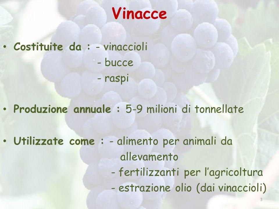 Vinacce Costituite da : - vinaccioli - bucce - raspi