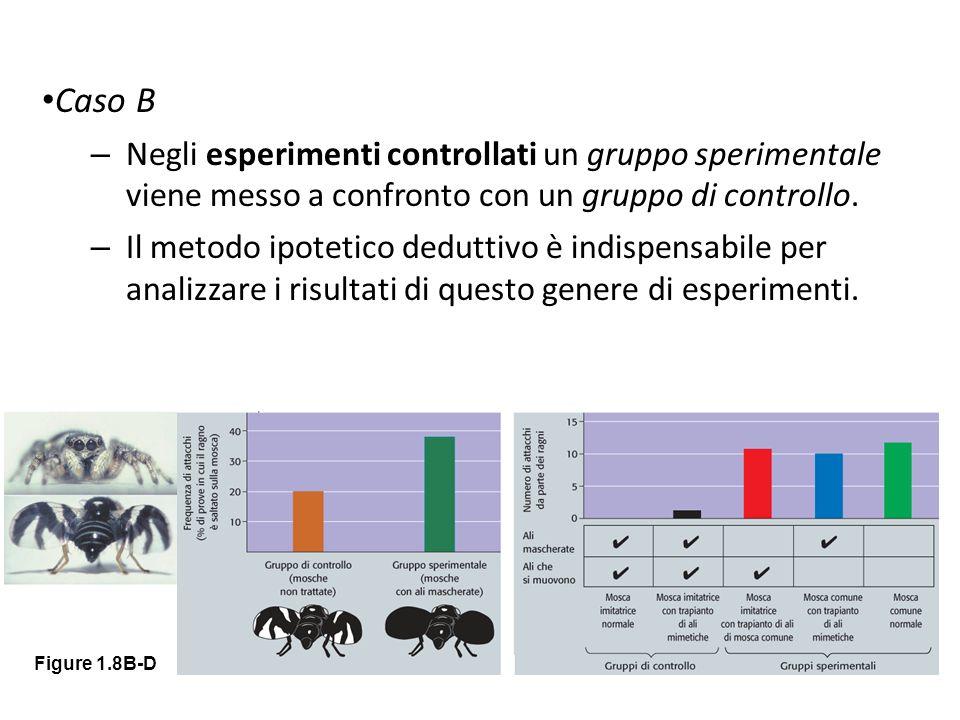Caso B Negli esperimenti controllati un gruppo sperimentale viene messo a confronto con un gruppo di controllo.