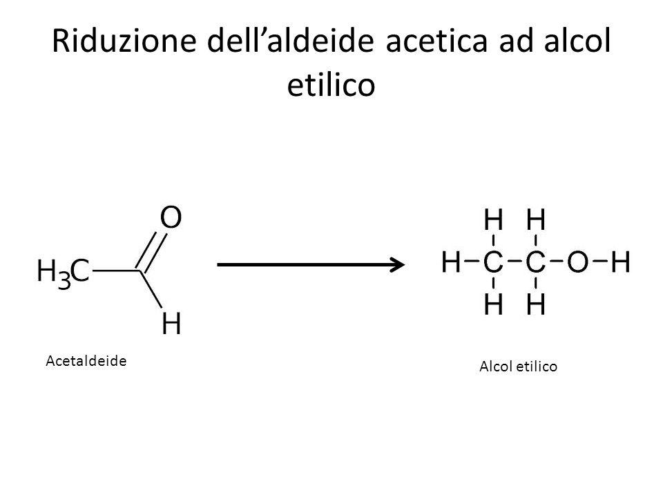 Riduzione dell'aldeide acetica ad alcol etilico