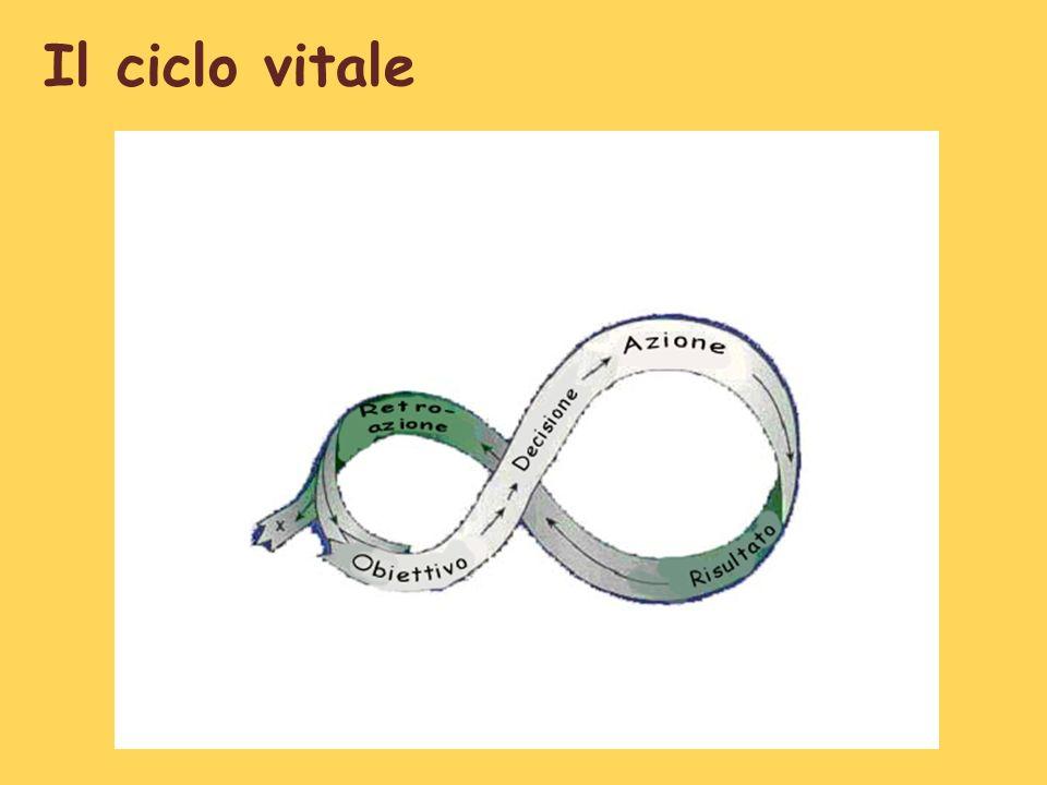 Il ciclo vitale