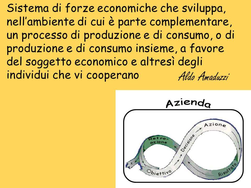 Sistema di forze economiche che sviluppa, nell'ambiente di cui è parte complementare, un processo di produzione e di consumo, o di produzione e di consumo insieme, a favore del soggetto economico e altresì degli individui che vi cooperano