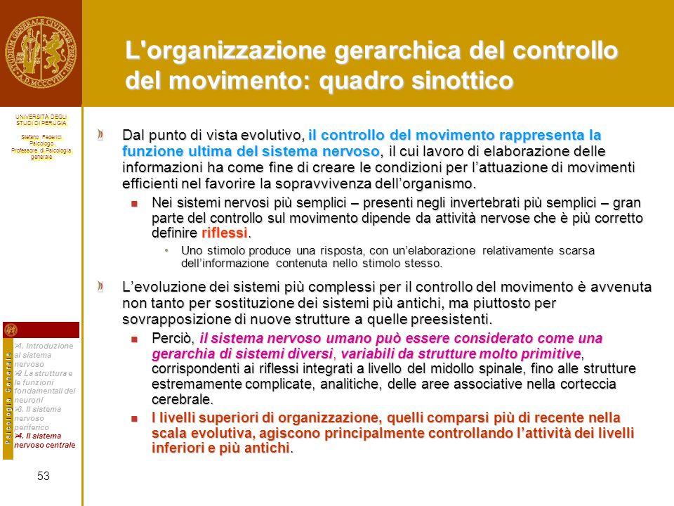 L organizzazione gerarchica del controllo del movimento: quadro sinottico