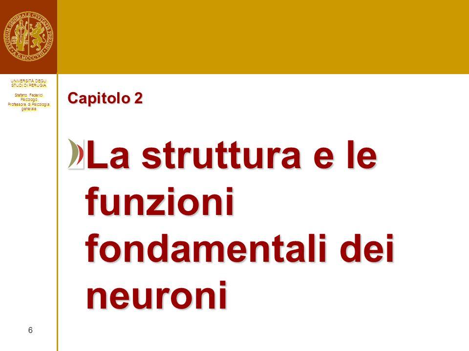 La struttura e le funzioni fondamentali dei neuroni