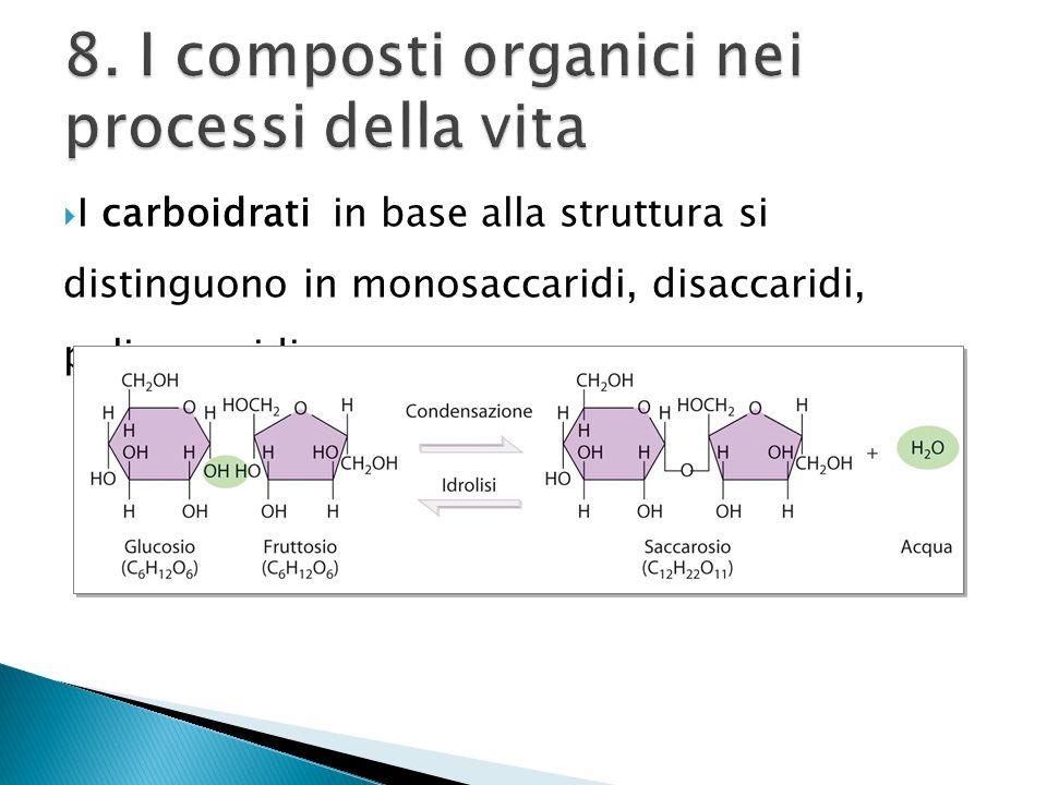 8. I composti organici nei processi della vita