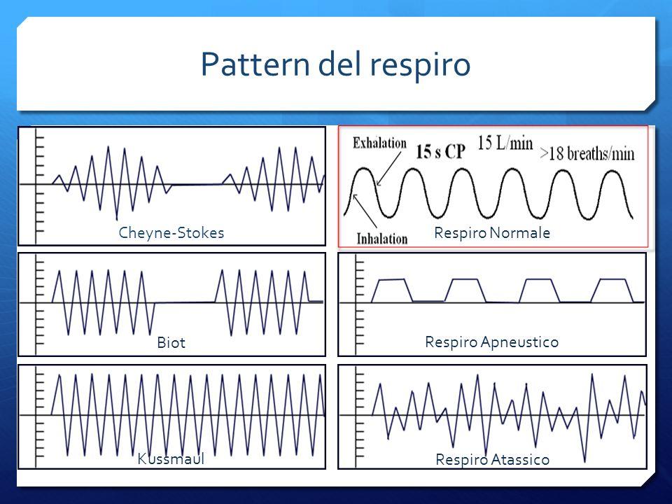 Pattern del respiro Cheyne-Stokes Respiro Normale Biot