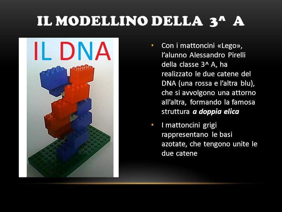 Il modellino DELLA 3^ A