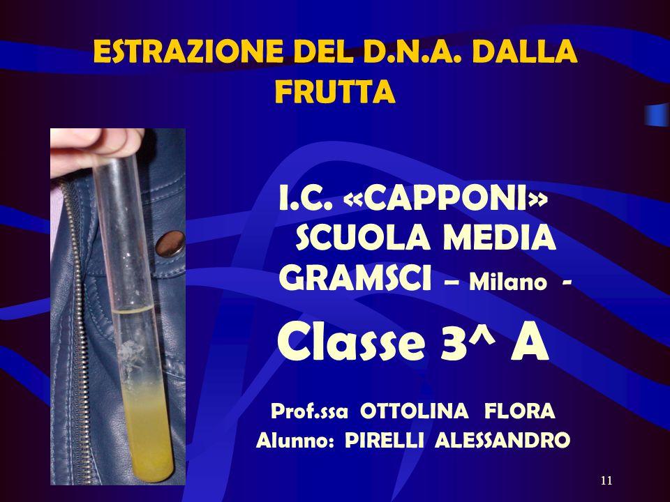ESTRAZIONE DEL D.N.A. DALLA FRUTTA