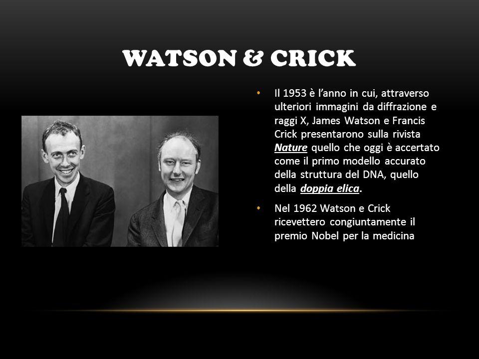 WATSON & CRICK