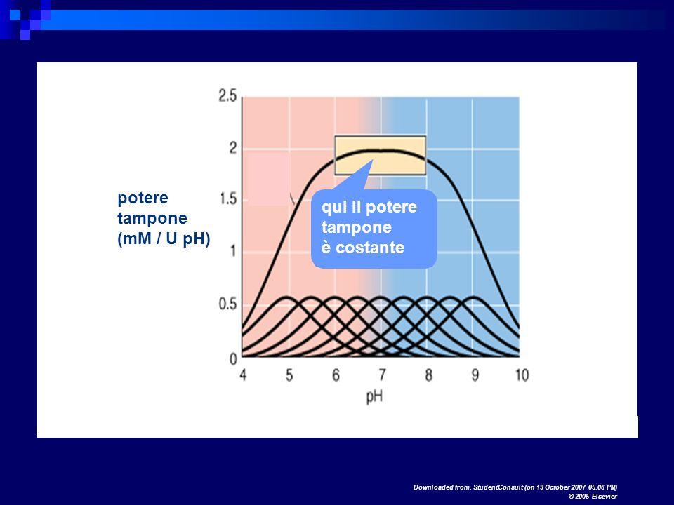potere qui il potere tampone tampone (mM / U pH) è costante