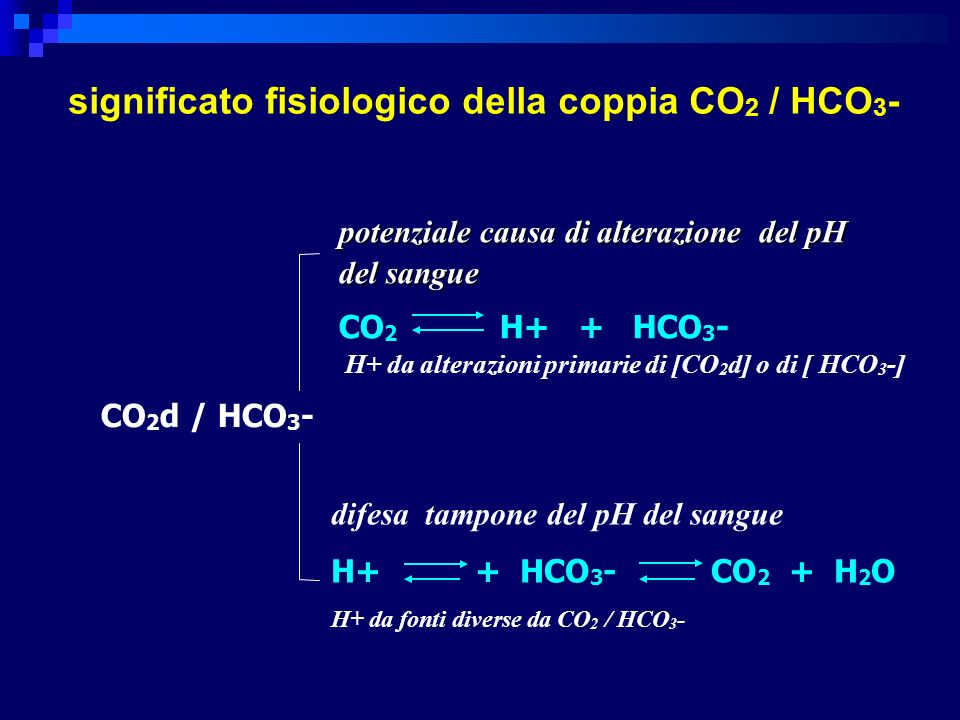 significato fisiologico della coppia CO2 / HCO3-