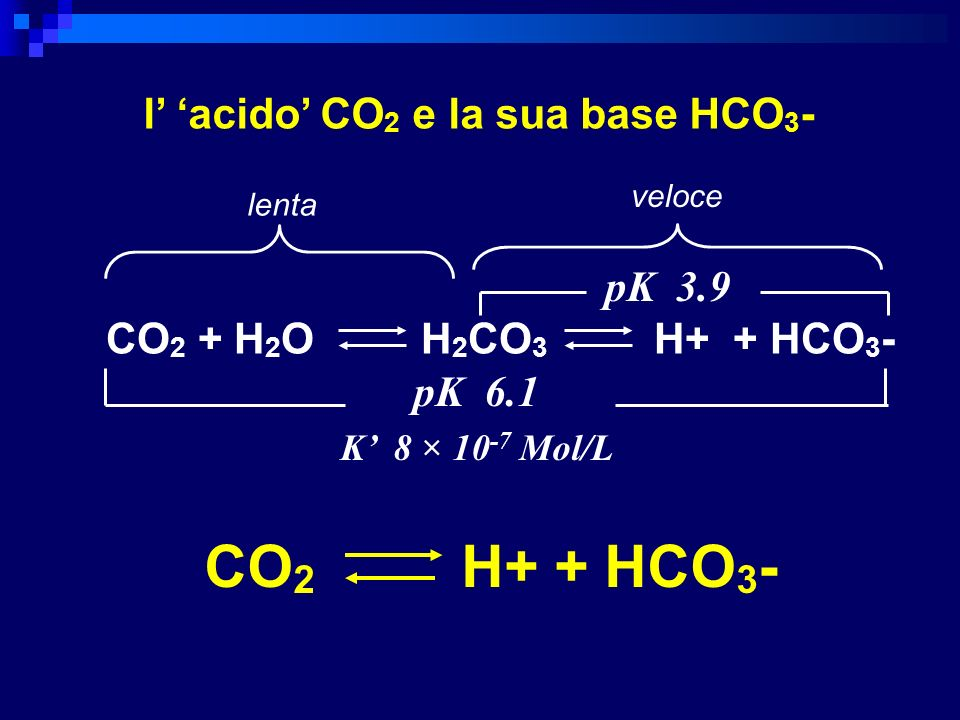 l' 'acido' CO2 e la sua base HCO3-