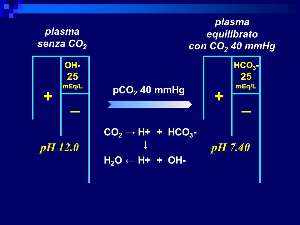 + + _ _ pH 12.0 pH 7.40 plasma equilibrato con CO2 40 mmHg plasma