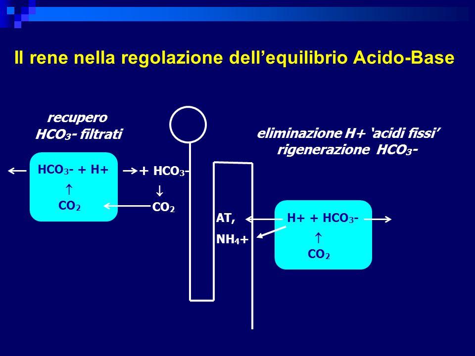 eliminazione H+ 'acidi fissi'