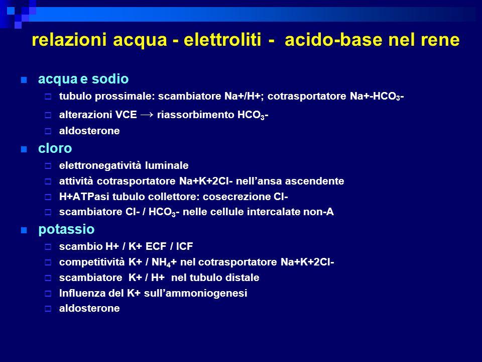 relazioni acqua - elettroliti - acido-base nel rene