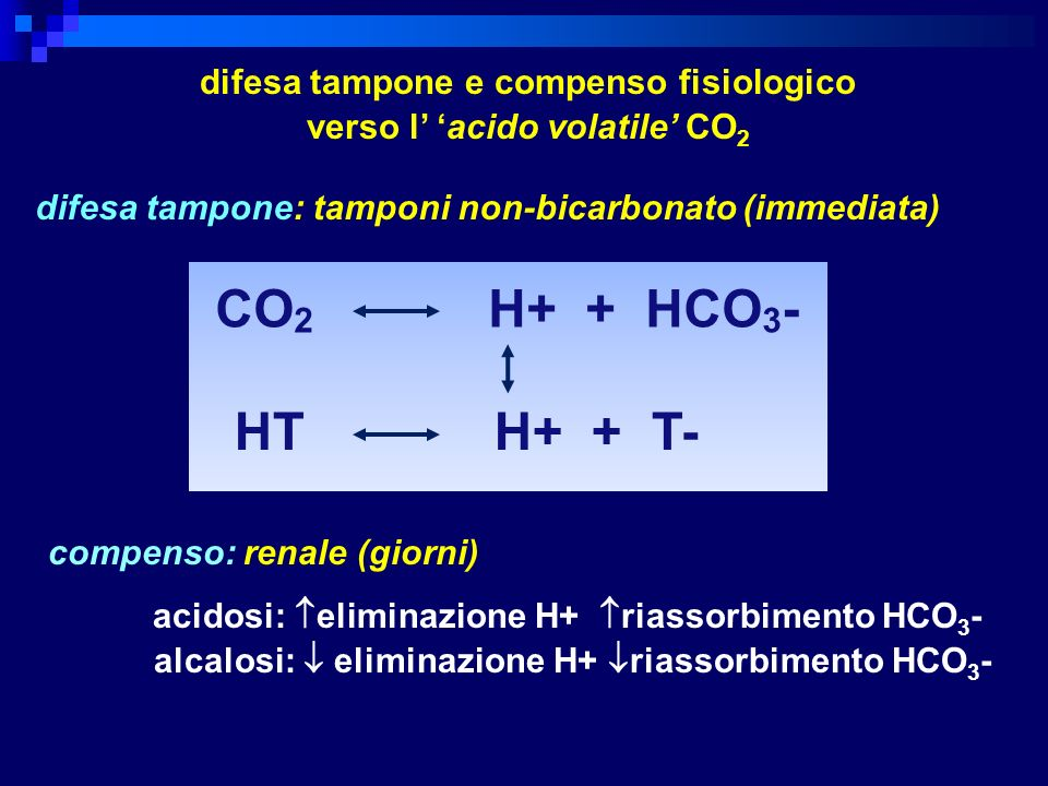 difesa tampone e compenso fisiologico verso l' 'acido volatile' CO2