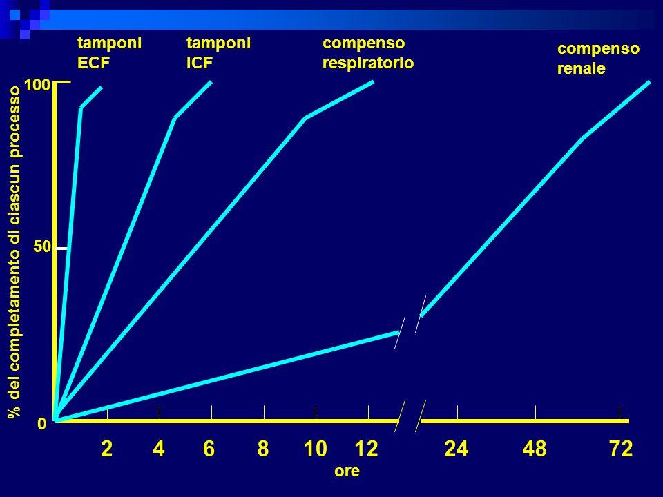 2 4 6 8 10 12 24 48 72 tamponi ECF tamponi ICF compenso respiratorio