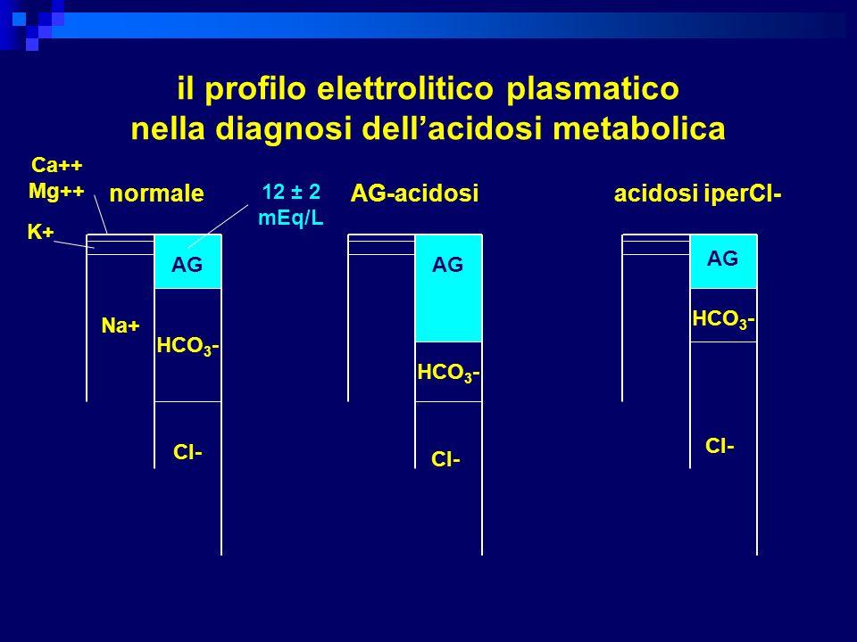 il profilo elettrolitico plasmatico nella diagnosi dell'acidosi metabolica