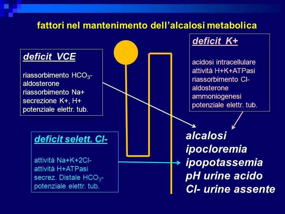 fattori nel mantenimento dell'alcalosi metabolica