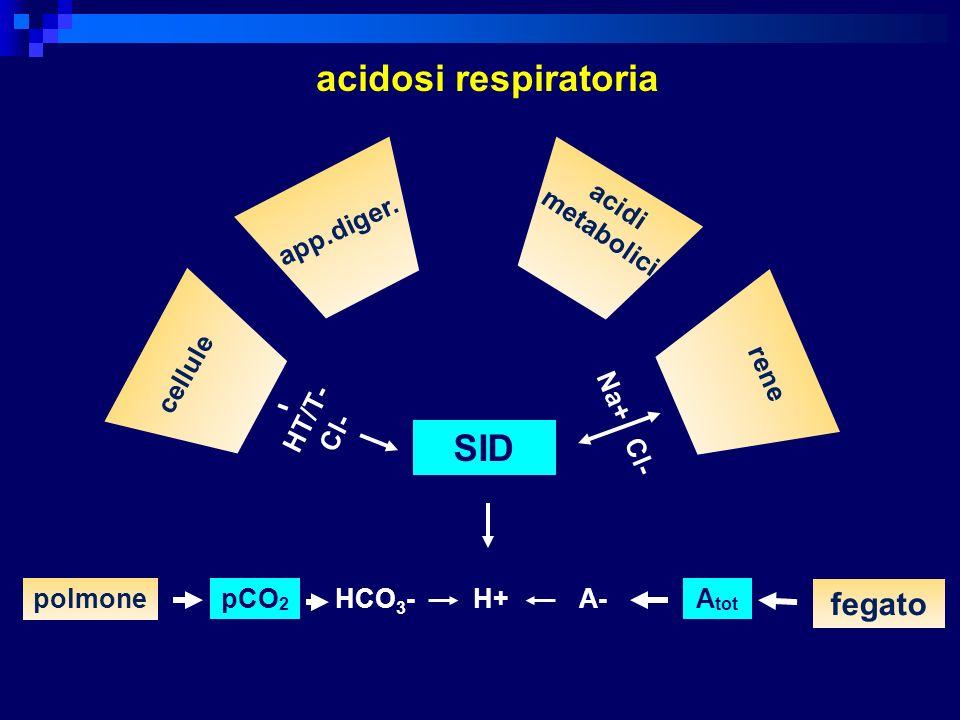 acidosi respiratoria SID