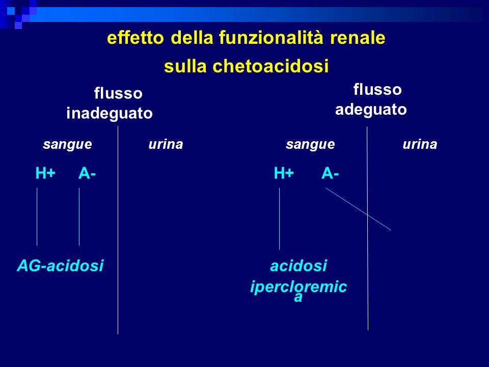 effetto della funzionalità renale