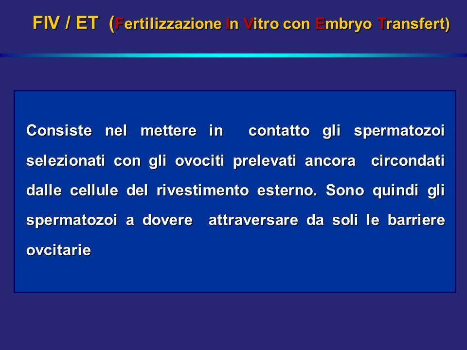 FIV / ET (Fertilizzazione In Vitro con Embryo Transfert)