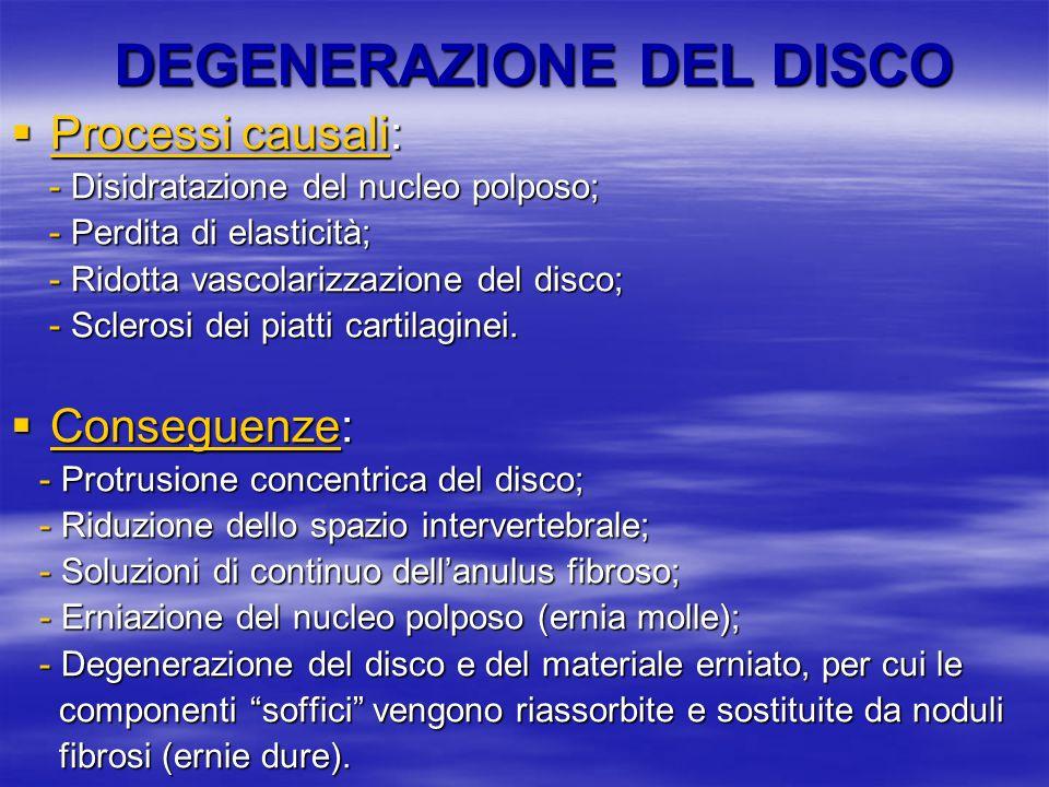 DEGENERAZIONE DEL DISCO