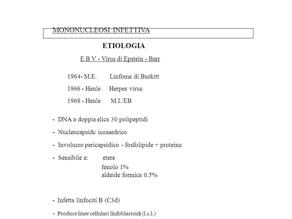 MONONUCLEOSI INFETTIVA ETIOLOGIA