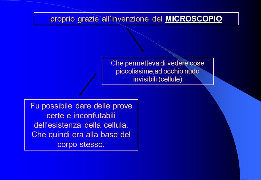 proprio grazie all'invenzione del MICROSCOPIO