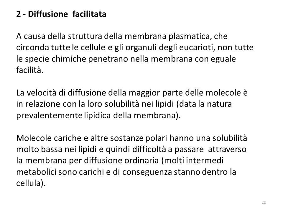 2 - Diffusione facilitata