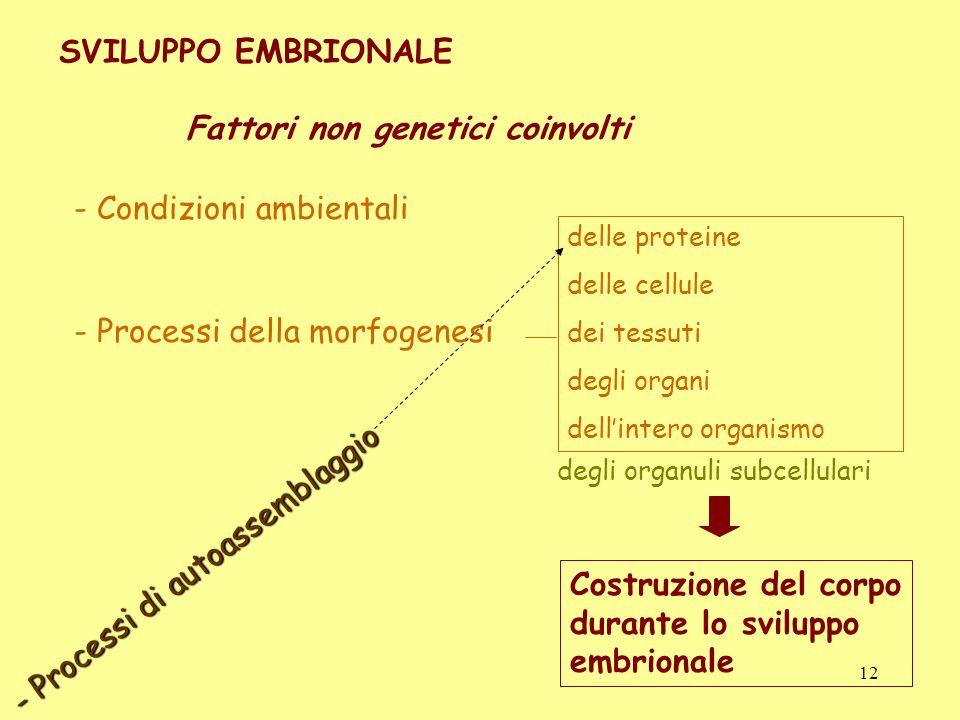 degli organuli subcellulari