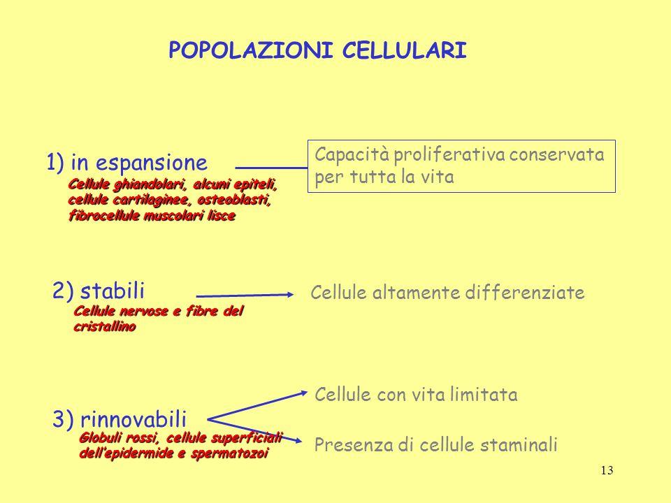 POPOLAZIONI CELLULARI