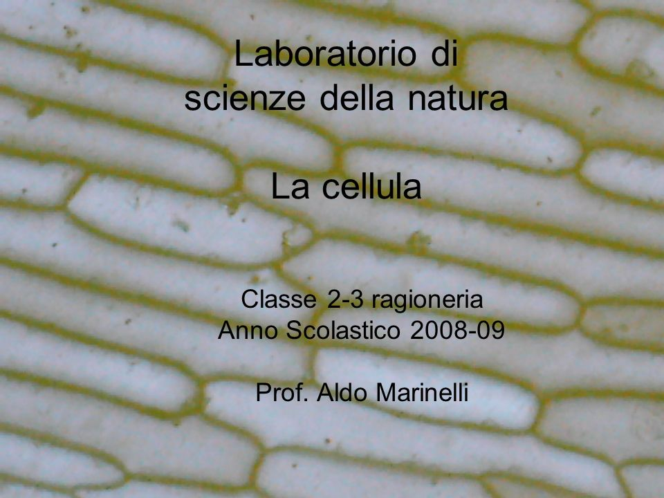 Laboratorio di scienze della natura La cellula