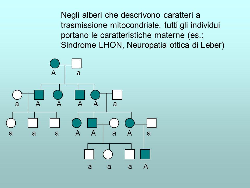 Negli alberi che descrivono caratteri a trasmissione mitocondriale, tutti gli individui portano le caratteristiche materne (es.: Sindrome LHON, Neuropatia ottica di Leber)