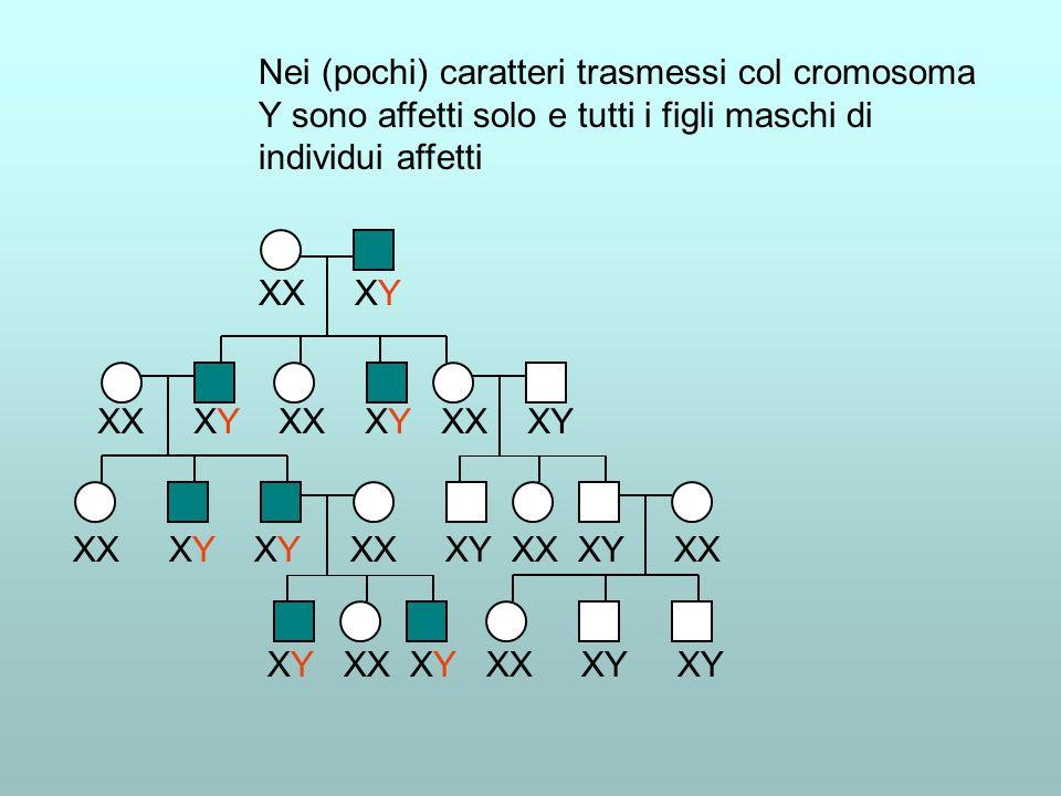 Nei (pochi) caratteri trasmessi col cromosoma Y sono affetti solo e tutti i figli maschi di individui affetti