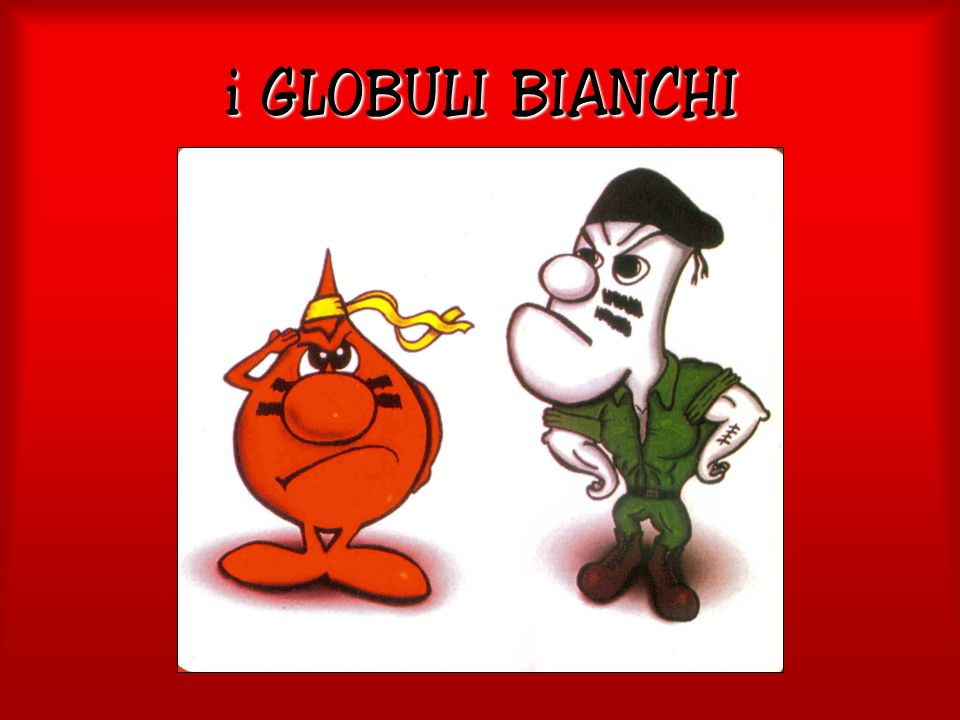 i GLOBULI BIANCHI