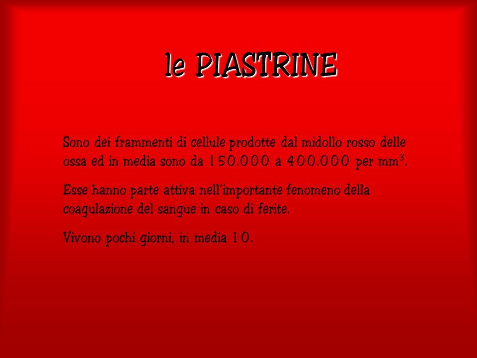le PIASTRINE Sono dei frammenti di cellule prodotte dal midollo rosso delle ossa ed in media sono da 150.000 a 400.000 per mm3.